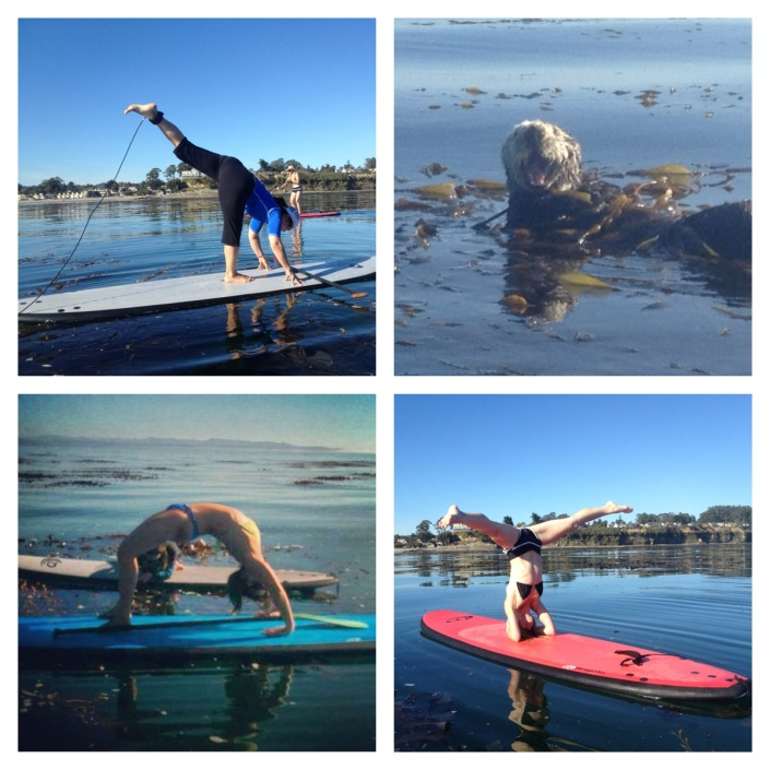 SUP Yoga in the Monterey Bay, Northern California